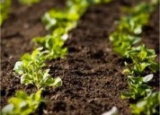 Abono organico abono natural abonos abono organico