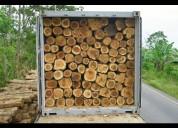 Vendo 9000 árboles de teca teka madera