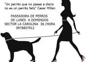 Paseadora de perros sector la carolina 0978857912