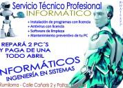 Servicios de informatica profesionales