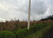 Se vende 3500 m2 de terreno en el sector de cerotal cerca san roque