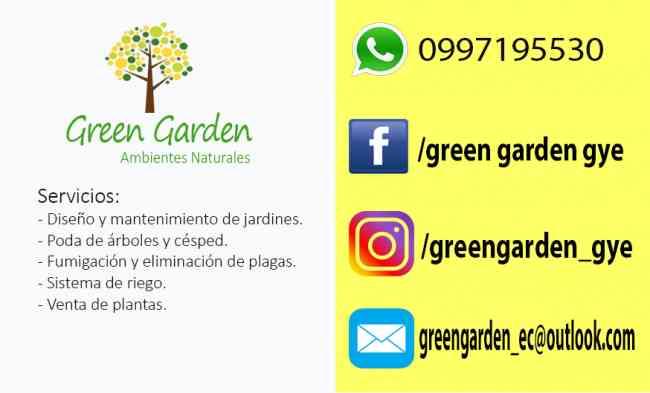 Servicio de poda de árboles en Guayaquil