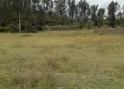 Vendo terreno de 5.500 m2 con una casa de campo en el punge