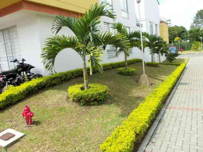Empresa de jardineria dise o y mantenimiento de jardines for Empresas de jardineria