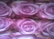 Venta bonches de rosas, bouquet rosas a nivel nacional, variedad