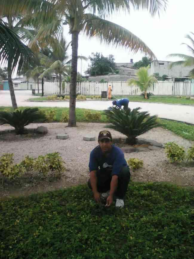 Servicios de Jardinería para casa o Condominio