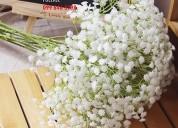 Venta de flor aliento de bebe por paquetes a 2,50 dolares, distribuidor la florería, rosas