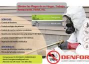Control de plagas - fumigaciÓn cucarachas y roedores