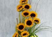 Ramos de girasoles la florería de todo precio