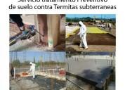 Fumigacion de terrenos contra termitas guayaquil-daule-samborondon