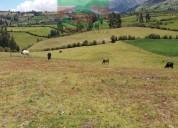 Vendo hermosa propiedad de 5.8 hectareas en Cayambe