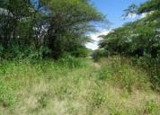 Vendo hermosa hda.680 hectareas para cultivos