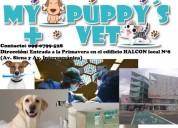 Veterinaria my puppy's vet