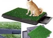 CÉsped para mascotas pet potty
