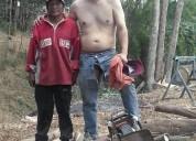 JardinerÍa, cortador de arboles