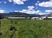 Tambillo - excelente terreno de 10.00 has. - alto impacto 100000 m2