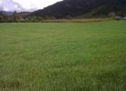 Hermoso terreno de venta . 2 hectáreas. san jose de minas $6,50 c/mt 20000 m2