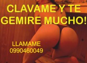 Dame palmaditas en mi clitoris tel 0990460049