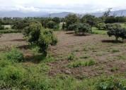 Vendo terreno de 7.000 m2 en chaltura provincia de imbabura