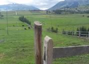 5 hectareas planas en cayambe