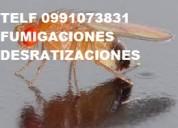 Exterminio de cucarachas hormigas pulgas y ratas