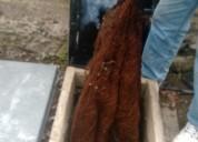 0991073831 la excelencia en limpieza de cisternas y tanques precios comodos llamenos