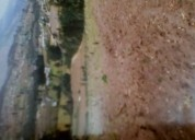 Vendo 1 hectárea de terreno en punyaro