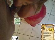 Transexual masajista y escort con rico culaso y poses camazutras al 0969604006 muy profesional