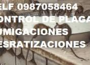 Control de plagas fumigaciones telef 0987058464