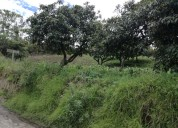 Vendo terreno en chaltura de 2.300 metros