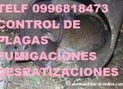 Telef 2428098 mantengase lejos de las plagas
