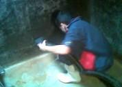 Telf 2428098 lavamos cisternas tanques elevados y piscinas