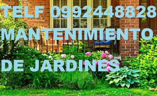 MANTENIMIENTO DE JARDINES LLAMENOS 022428098