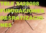 Telef 2428098 eliminamos cucarachas hormigas avejas etc