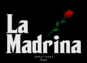 AcompaÑantes socio/sexuales de #lamadrinademanta