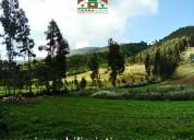 En venta quinta con terreno de 4 hectareas  en zuleta