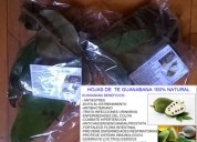 Hojas de te de guanabana producto 100% natural:combate el stress,evita el estreñimi237567