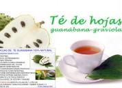 Hojas de te de guanabana producto 100% natural:combate el stress,evita el ege el sistem