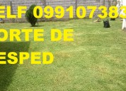 0991073831 jardineria corte de cesped mantenimiento y limpieza