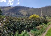 Se vende propiedad agricola-turistica