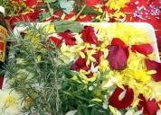 Limpias y baÑos de florecimiento