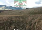 En venta 5 hectareas planas en llanos de alba 5000 m2