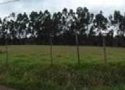 Terreno sector cotogchoa cuendina 18900 m2