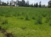 Hermoso terreno de venta sector puembo 37 669 m2 barrio las palmas en quito