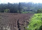 Tababela hermoso terreno de venta 8 8000 m2