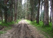 Tababela terreno en venta 8 hectareas 80000 m2