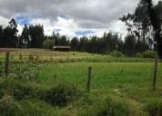 terreno plano ideal para cultivos o lotizacion en cuenca