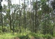 Terreno venta conocoto cop huertos familiares 1000 m2