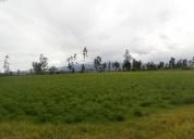Vendo terreno de lujo en checa rosana cocios 5000 m2