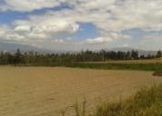 Tababela terreno de venta totalmente plano 5 00 has 50000 m2